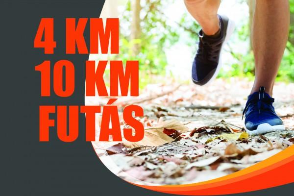 10km futó diétaf